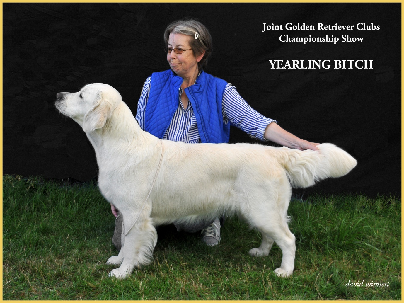 A person petting a dog Description automatically generated with low confidence