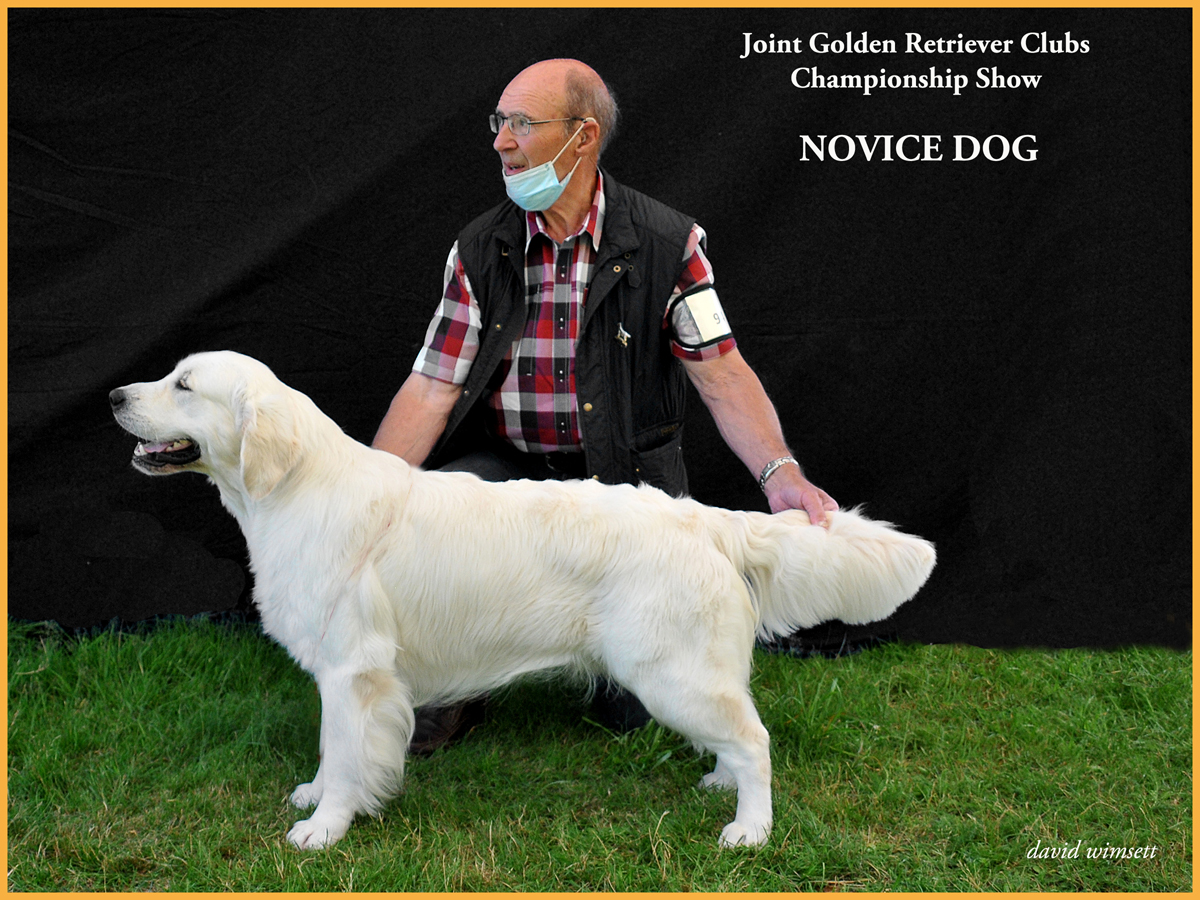 A person with a dog Description automatically generated with low confidence