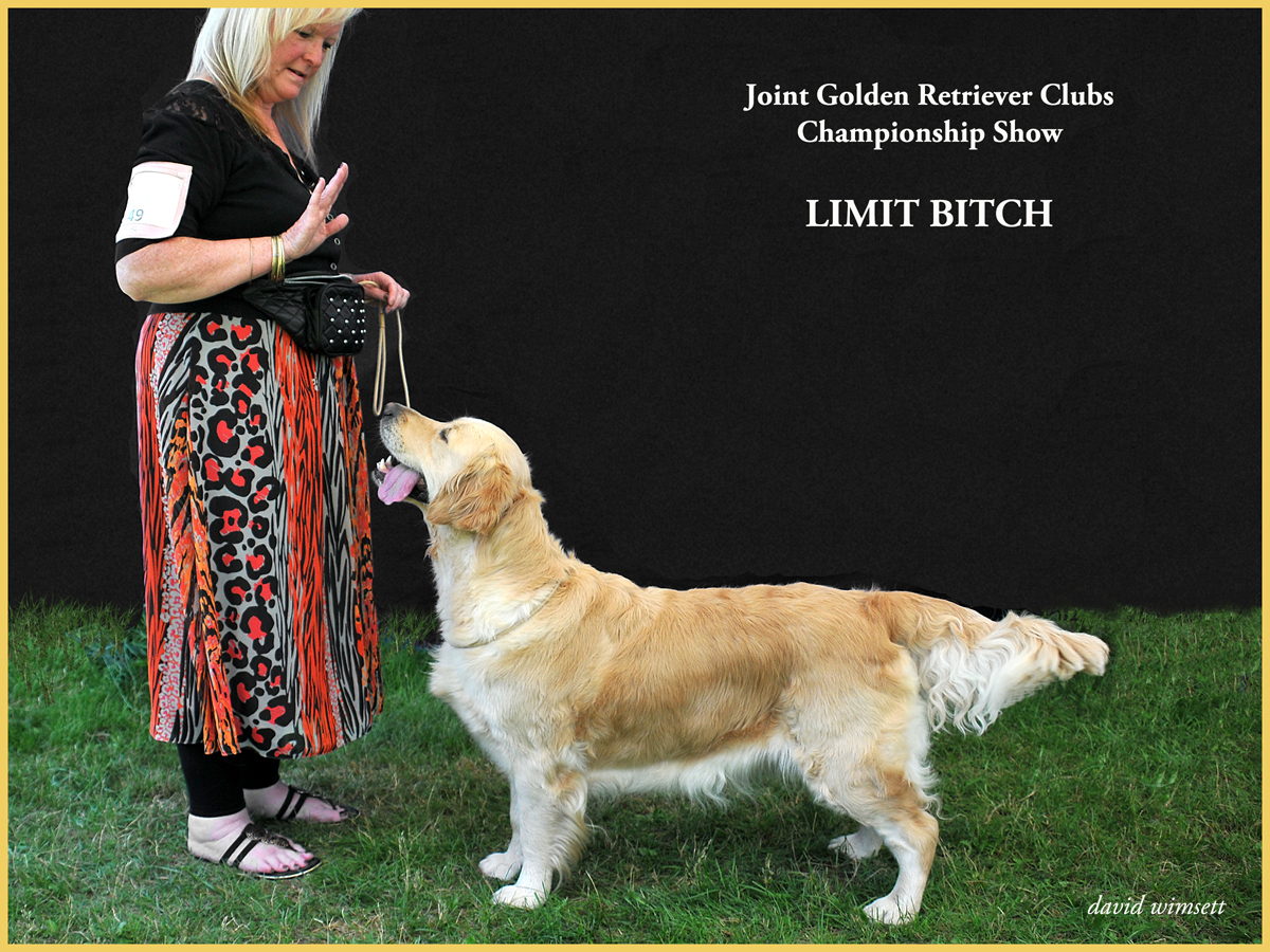 A picture containing text, grass, dog, outdoor Description automatically generated