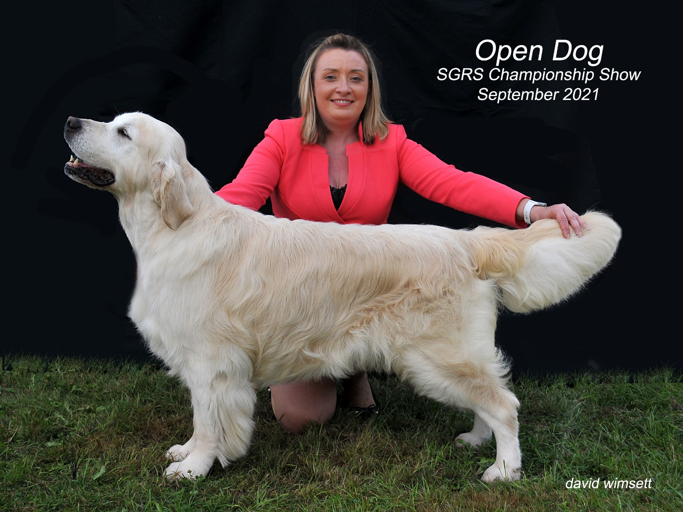 A person kneeling next to a dog Description automatically generated with low confidence
